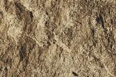 Textura de piedra — Vector de stock