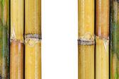 美しい日本の竹の背景 — ストック写真