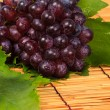 Red grape and leaf with harvest was new. — Stock Photo #23513737