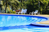 Luxury swimming pool with sundeck white close up in tropical gar — Stock Photo