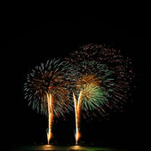 A delicate burst of fireworks in the night sky — Foto de Stock
