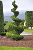 Artistic forms for ornamental plants — Stock Photo
