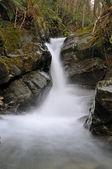Stream and fluid movement — Stock Photo