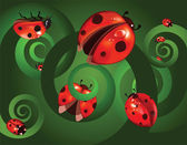 Ladybirds on a green background — Stock Vector
