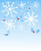 Snowflakes and holly — Stock Vector