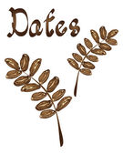 Dates — Stock Vector