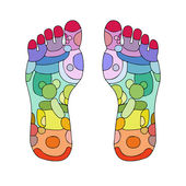 Reflexology foot massage points — Stock Vector