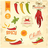 Chilli, chili, pepper vegetables, product label packaging design — Stock Vector