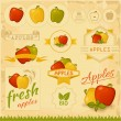 Apples, food fruits, product label — Stock Vector