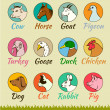 Farm animal heads isolated, — Imagen vectorial
