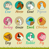 Farm animal heads isolated, — Vector de stock