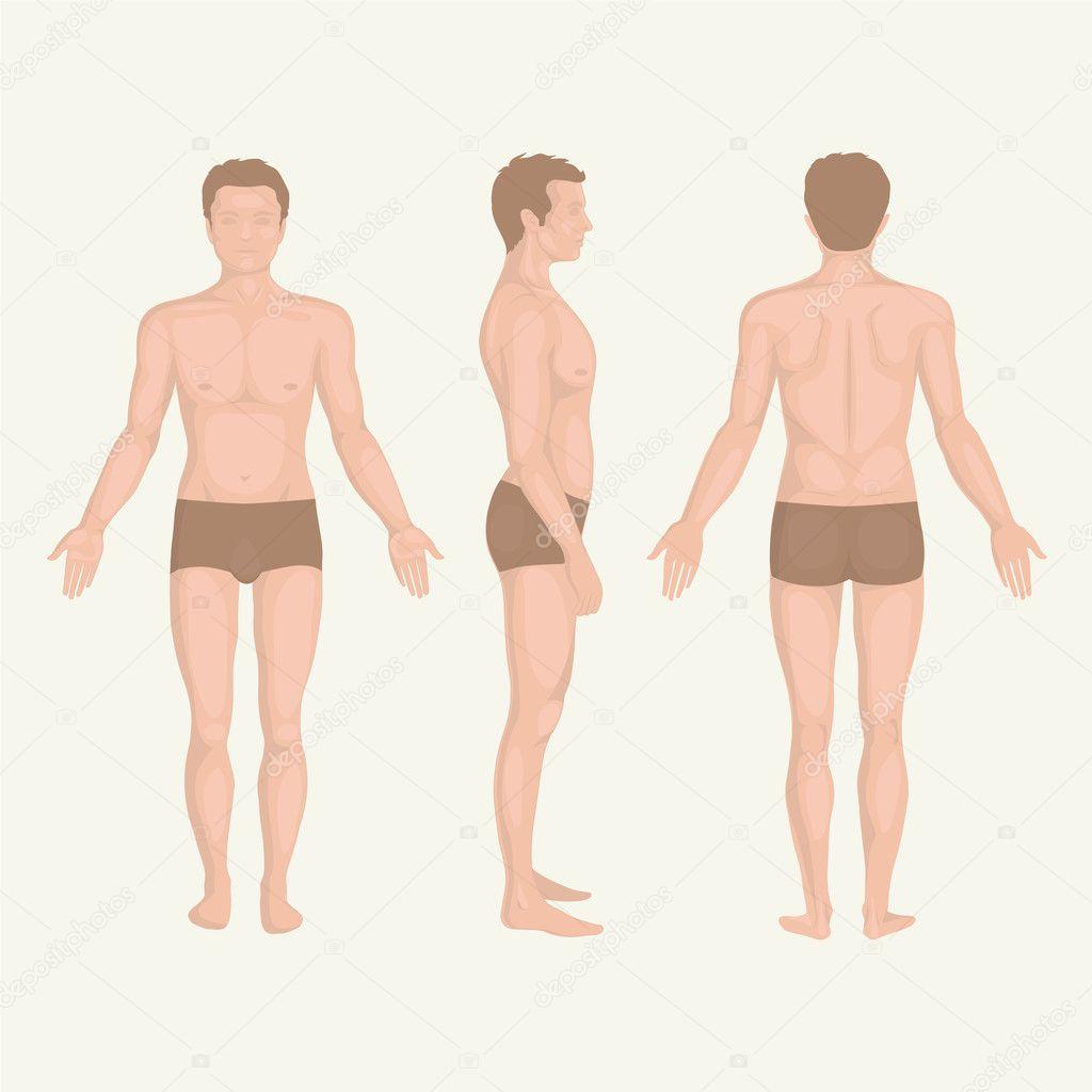 golie-chasti-tela-cheloveka