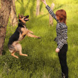 Stock Photo: Young womtraining her dog