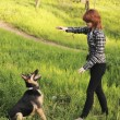 Young woman training her dog - Stock Photo
