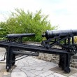 Stock Photo: Old Cannons