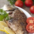 Fried (roasted) Fish (Dorado) Garnished with Lemon, Tomato — 图库照片