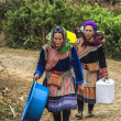 图库照片: Two Hmong women loaded up baskets on their backs come around bend in road.