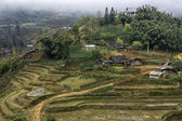 Farming village in the highlands of Vietnam. — Stock Photo