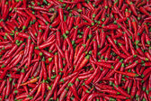 Vietnam Bac Ha: Pigment red hot jalapeno chili peppers — Stockfoto