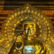 Vietnam Chua Bai Dinh Pagoda: Frontal Close up of Giant Golden Buddha — Stock Photo