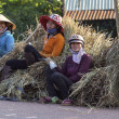 Women wait on the side of the road sitting on bundles of rice straw. - Stock Photo