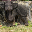 Damaged elephant statue on bas relief of Chien Dam Cham tower. — Stock Photo