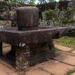 Linga in the Yoni at My Son Cham Sanctuary. — Stock Photo #26431339