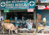 BANGALORE, INDIA - CIRCA OCTOBER 2013: Pharmacy in the old town. — Stock Photo