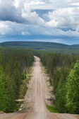 Road cuts through the forest in eastern Lapland. — Stock Photo