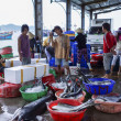 Fishermen and women sorting fish at the harbor. — Foto Stock