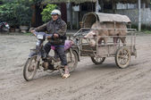 Merchant on motorcycle brings his boar to the sow to procreate. — Stock Photo