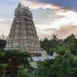 Gopuram of Shiva Temple at Vellore Fort. — Stock Photo