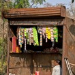 Typical small shop selling basic products in Indian villages. — Stock fotografie #49237967