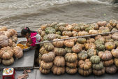 Sitting among a pile of pumpkins on her parents barge. — Stock Photo
