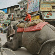 Mahout on crowded street Main Bazar in Delhi, India. - Stock Photo