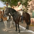 Mounted Police on  the streets in Agra — Stock Photo