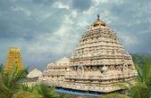 Hindu Narasimha temple — Stock Photo