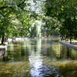 Park landscape in summer - Stock Photo