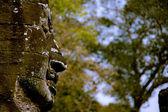Estatua de buda con bufanda de oro — Foto de Stock