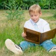 Schoolboy sitting in the park and reading a book — Stock Photo