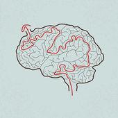 Brain maze with correct path — Stock Vector