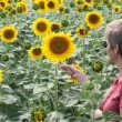 Agronomy expert and sunflowers — Vídeo Stock