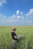 Agriculture, agronomist in field — Photo
