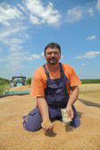 Agriculture, wheat harvest, farmer and money — Stock Photo