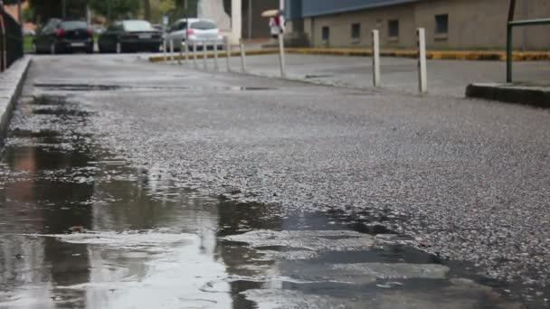 Llueve en la calle — Vídeo de stock