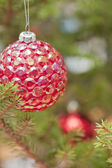Red bauble in a christmas tree — Stock Photo
