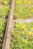 Old fashioned railway tracks — Stock Photo