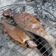 Two smoked fish on barbecue — Stock Photo
