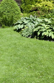 A beautiful landscaped garden with a variety of perennials and a — Stock Photo
