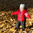 Stock Photo: Little boy walking in the autumn park